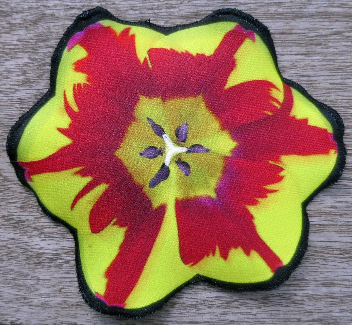 Tulpe rot-gelb