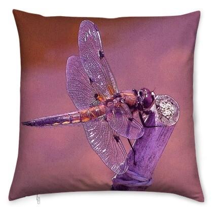 kis_dragonfly_orange