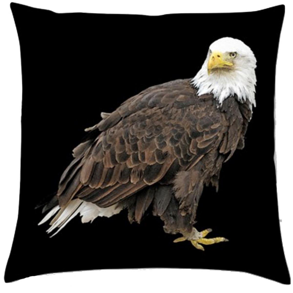 kis_eagle