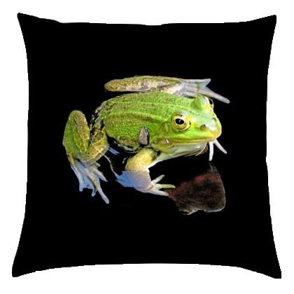 frog cushion back