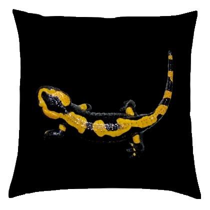 kis_salamander