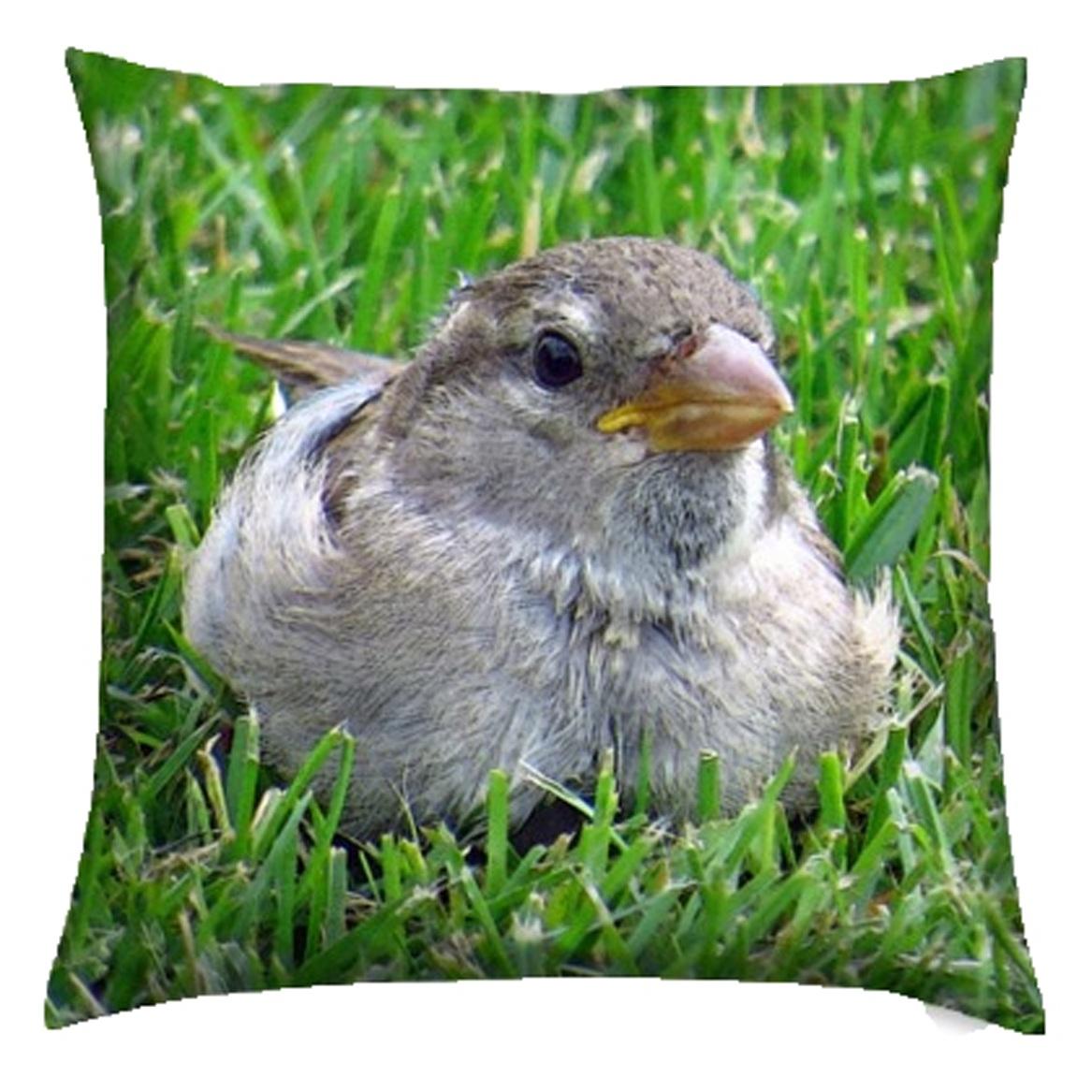 kis_sparrow-grass