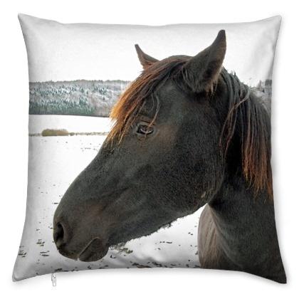 kis_winter-horse