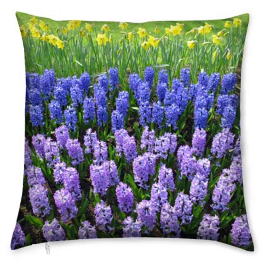 kis_blue_purple_hyacynth-1
