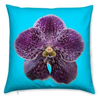 kis_orchid_puple_tur-1