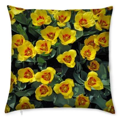 kis_yellow_tulips-1