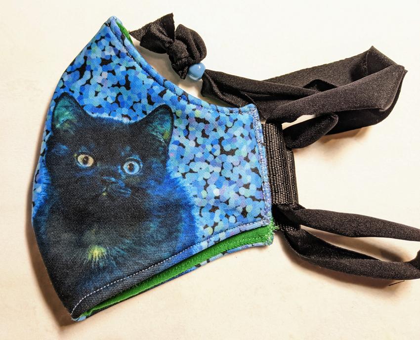 2F_blue_kitty