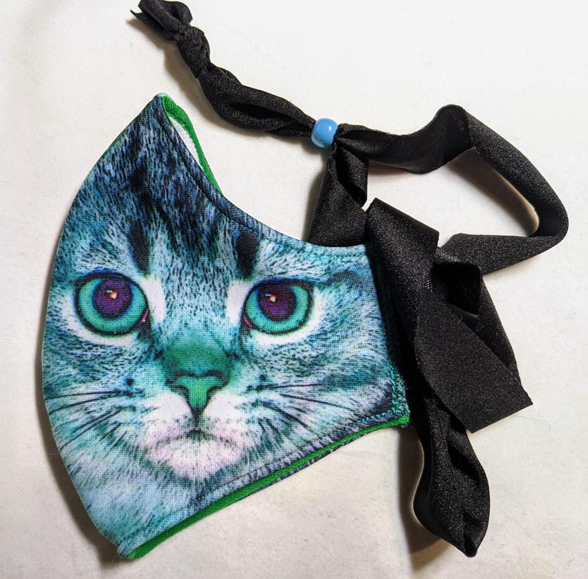 2f_turq_kitty_close
