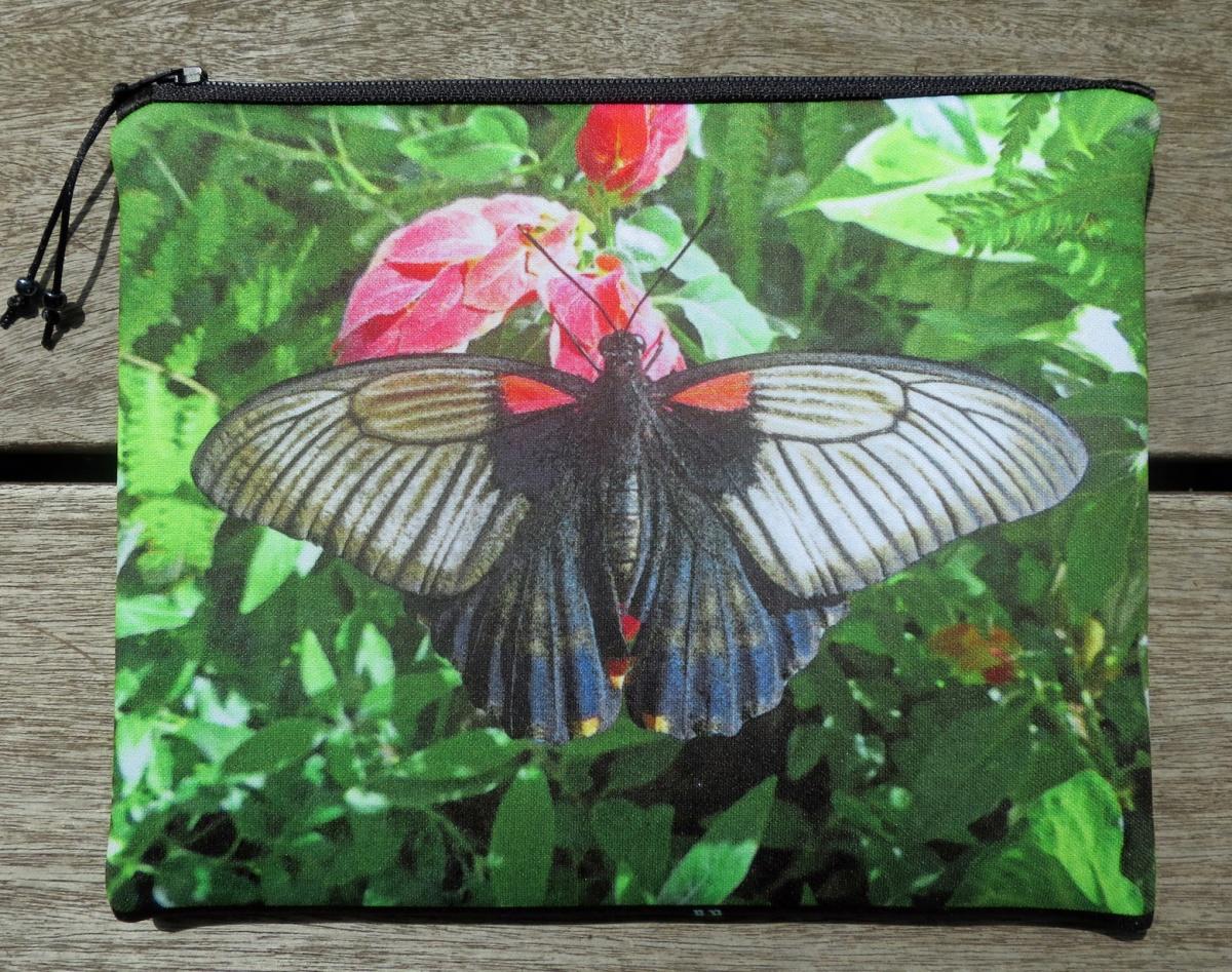 Butterfly 'L'