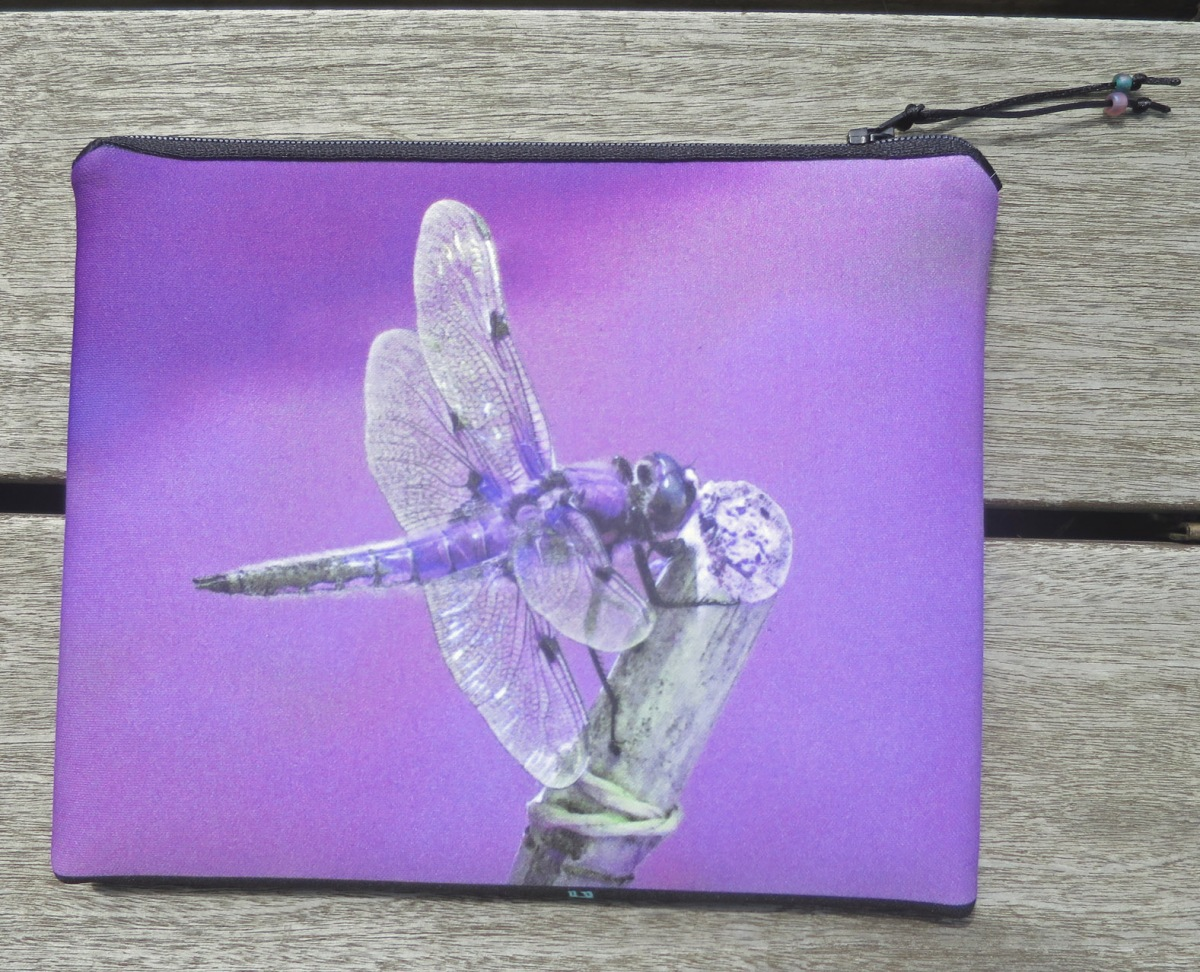 Dragonfly front 'L'