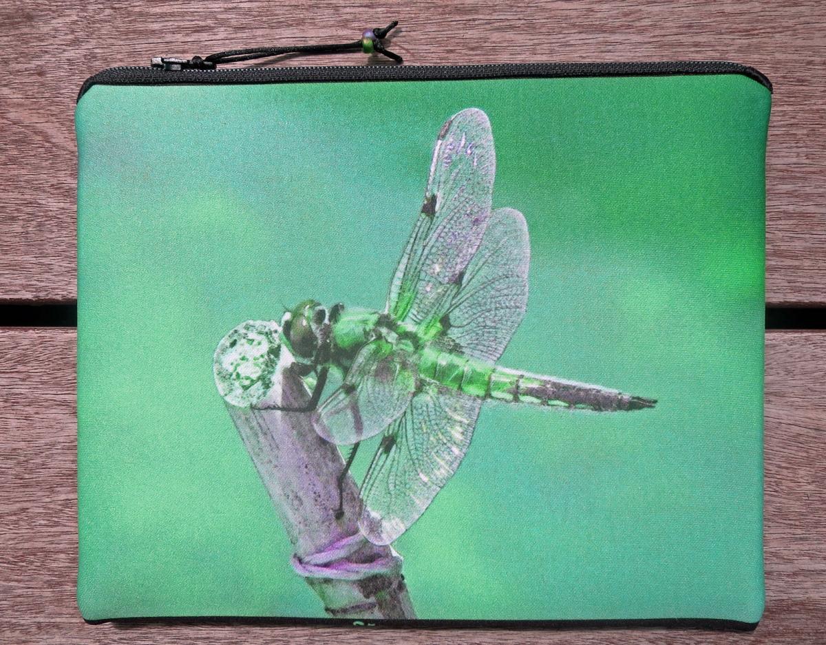 Dragonfly back 'L'