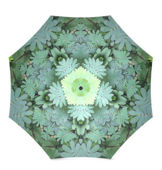 mimosa_umbrella