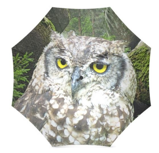 owl-umbrella